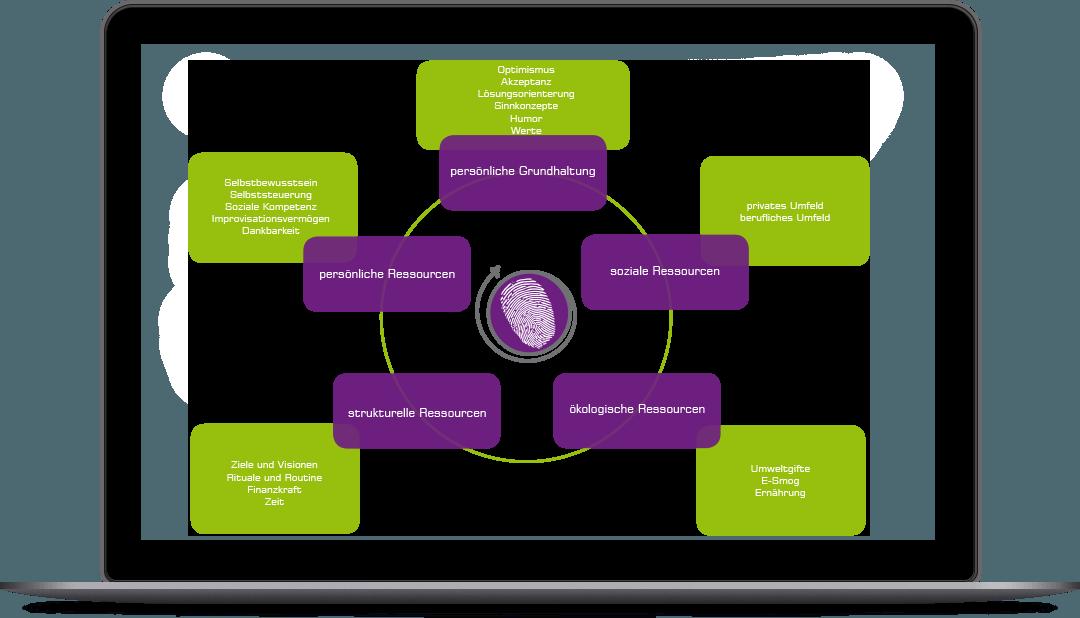 Linzer Ressourcen Modell